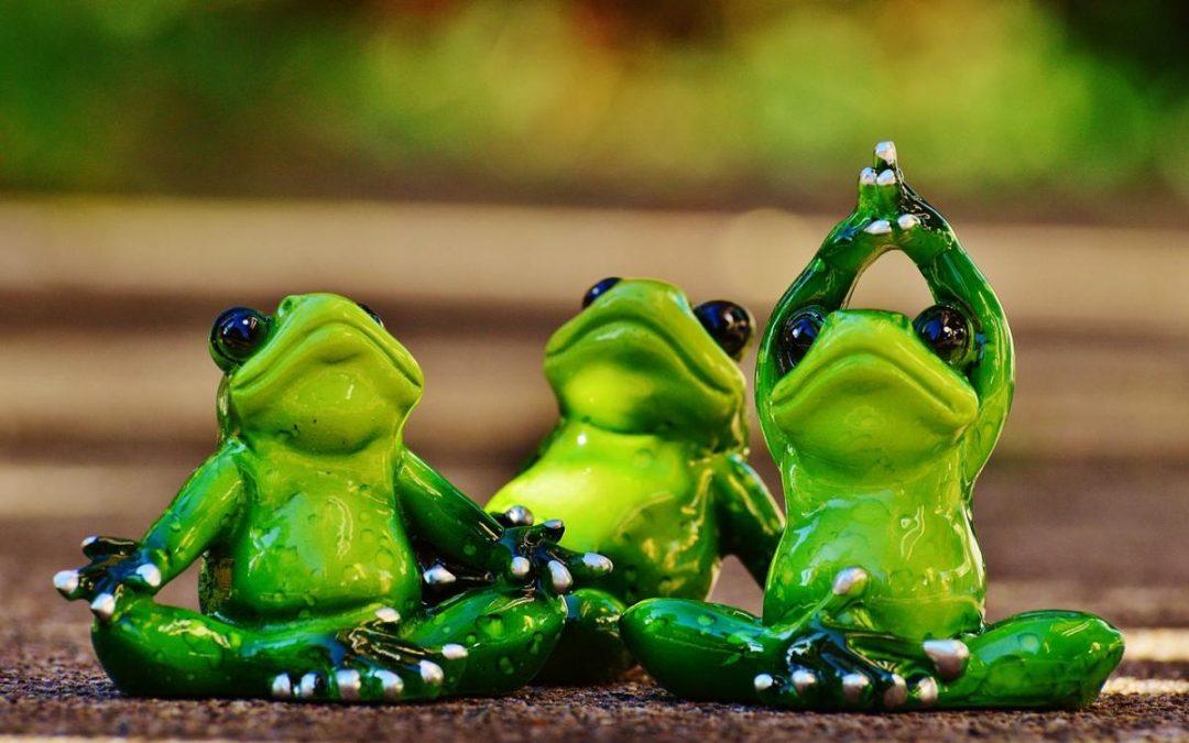 Wie soll eine Yogaübung ausgeführt werden?