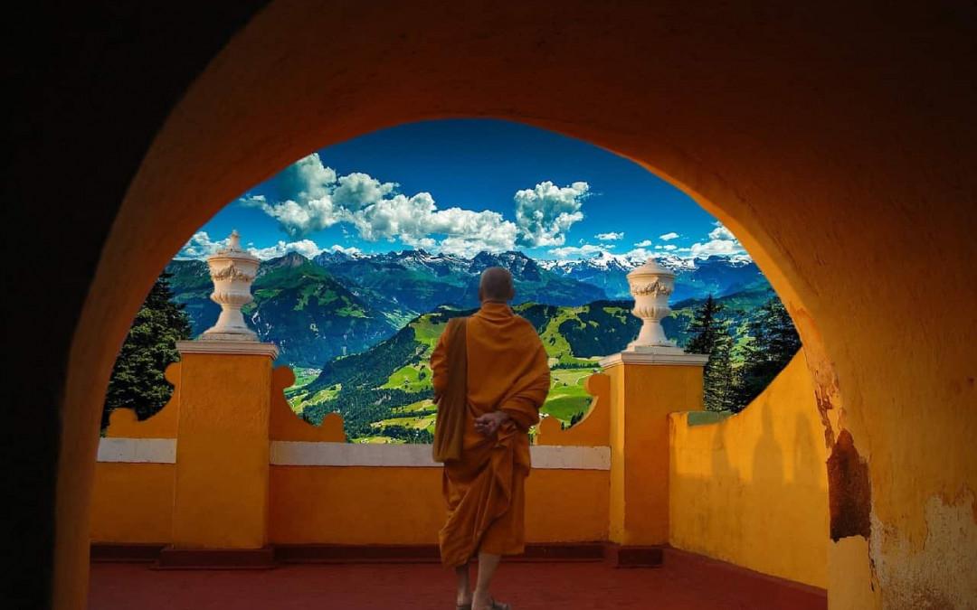 Meditation und das Leben